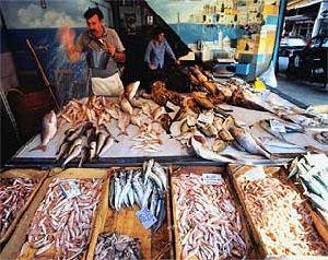 Složenac od ribljih fileta i povrća