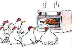 Piletina sa šparglama