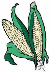 Krem čorba od kukuruza