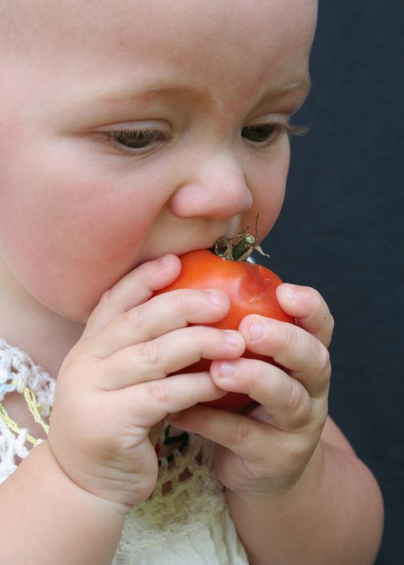 Bebe i ishrana: čvrsta hrana u prvoj godini