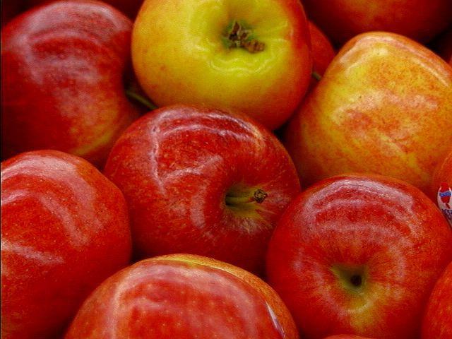 Puding pita od jabuka ili bundeve