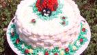 Bubamara torta s jagodama