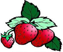 Nabujak od jagoda