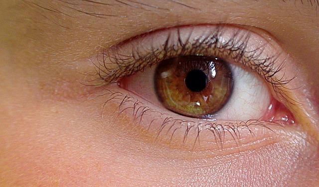 Foto: Uroburos/Pixabay.com