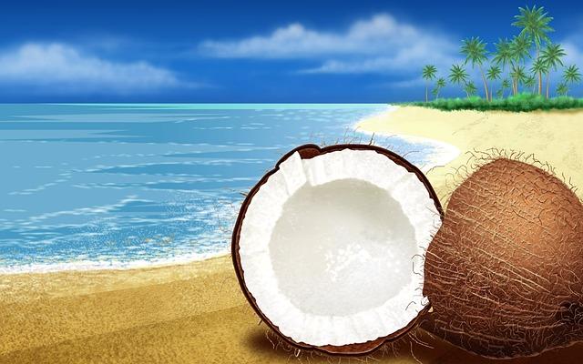 Rolat od kokosa s pekmezom