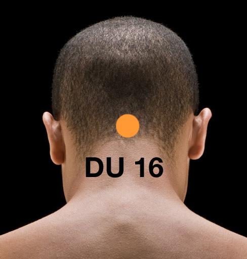 DU_161