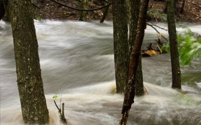 Poplave i posttraumatski poremećaj