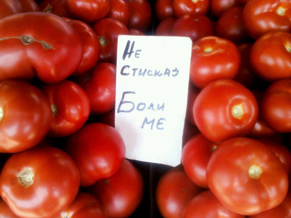 paradajjjjjjjjjjjz
