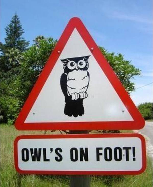 Funny-Traffic-Signs-That-Include-Animals7