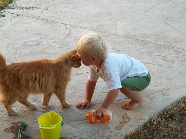 Čuvati mačku je zdravo!