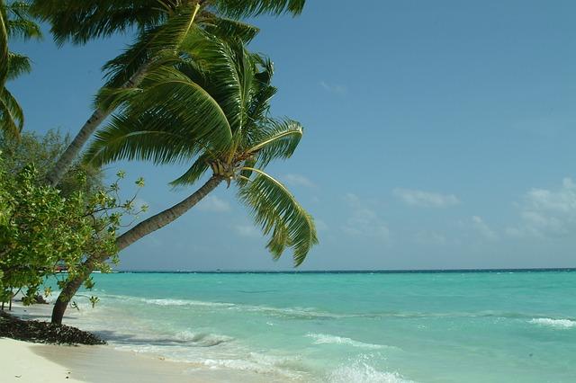 Maldivi (2)