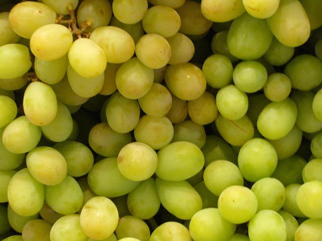 Pijano grožđe