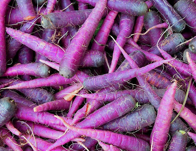purple-carrot-seeds-640x492