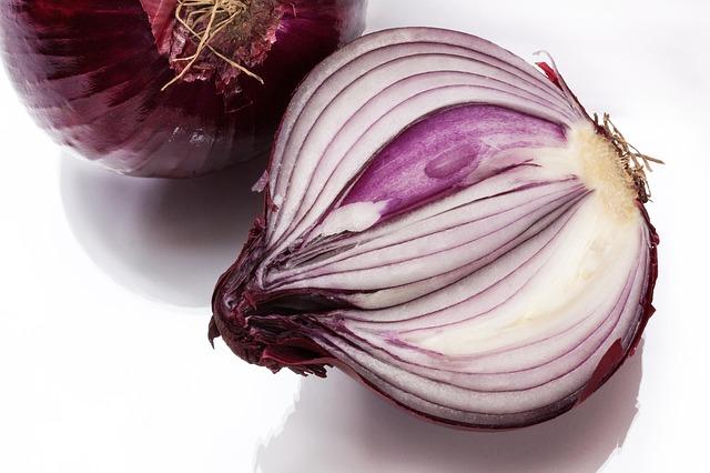 onion-276590_640