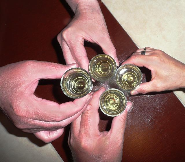 Nisu sve osobe koje piju alkoholičari