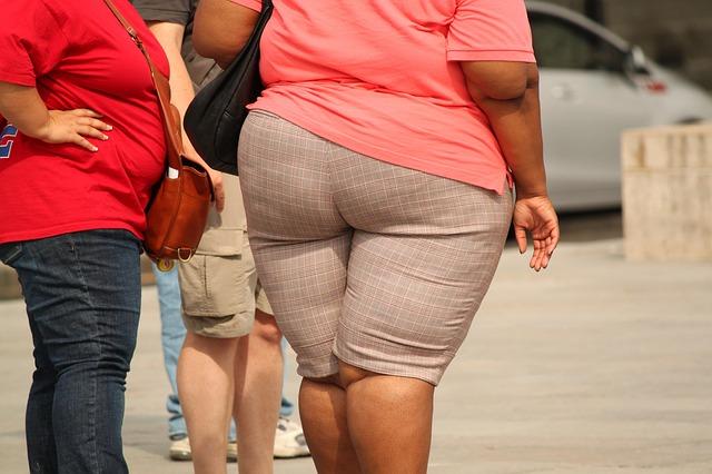 Gojaznost se zanemaruje!