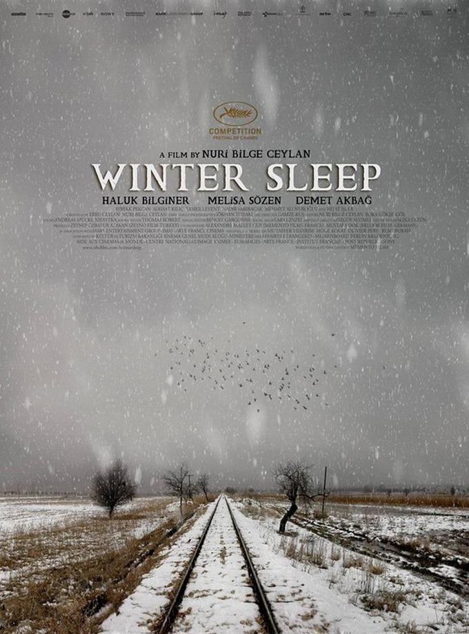 Zimski san