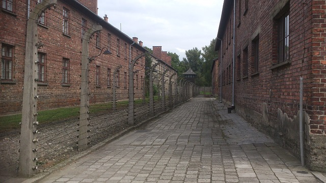 Muzej Aušvic: U lažnom dnu šolje pronađen nakit logorašice