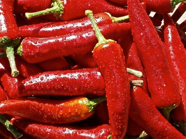 Tarator od paprika