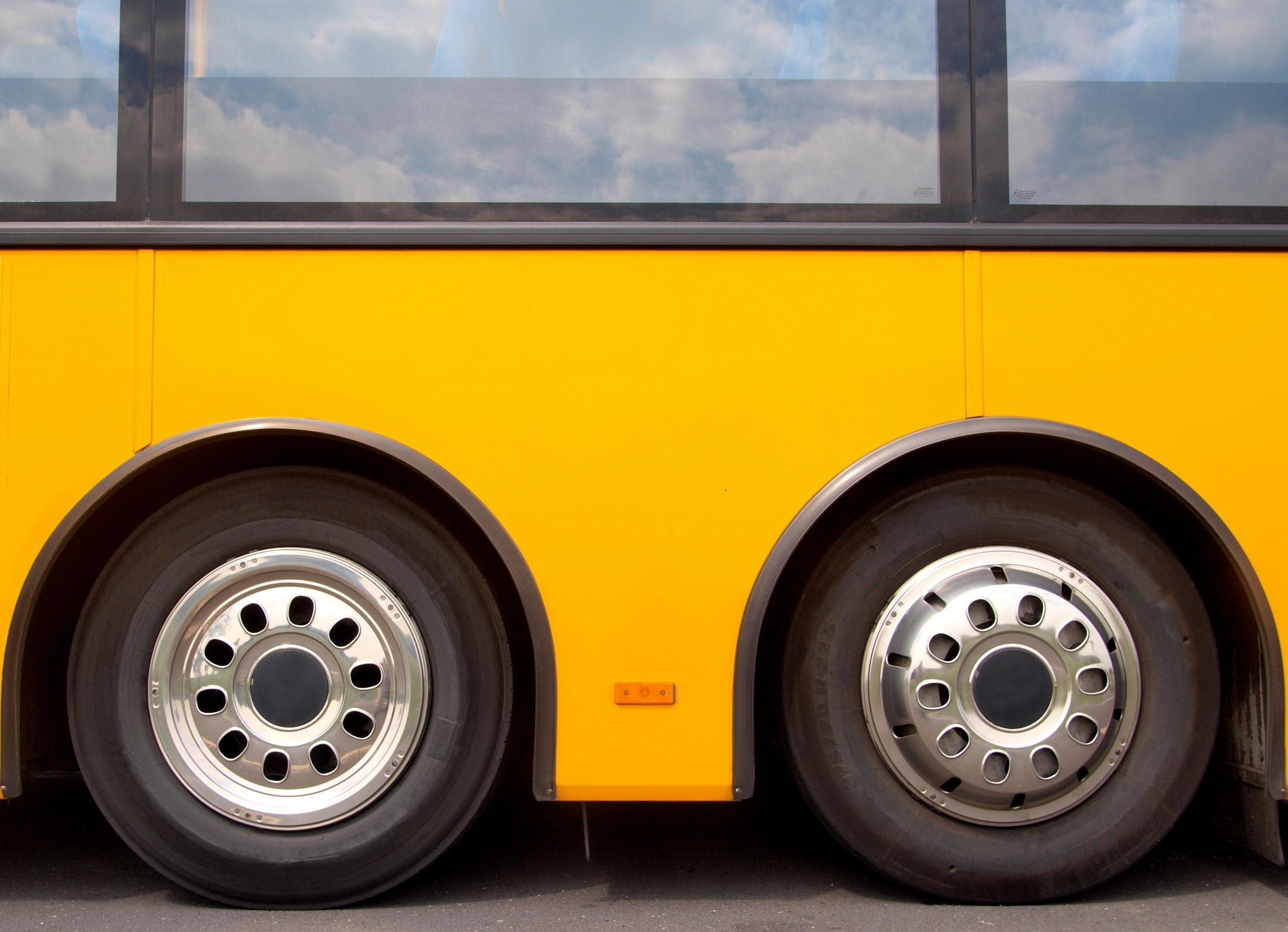 Neverovatno ali istinito: U Srbiji besplatan lokalni prevoz