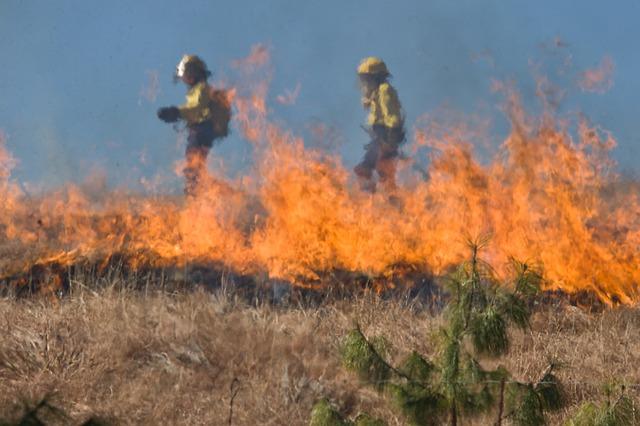 Pakleno: Požare oko Splita gasi 384 vatrogasaca sa 102 vozila