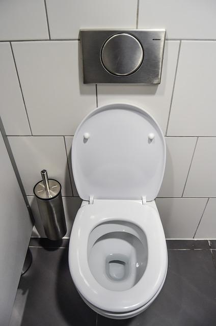 I vi ovo sigurno radite u WC-u, ali to vas neće spasiti infekcije