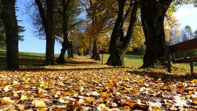 Izbeći jesenju depresiju
