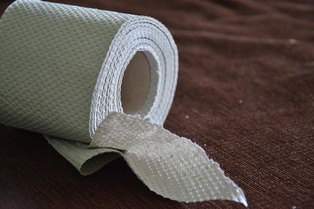 Austrija: Ministar mora da pravda potrošnju papira za higijenu