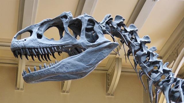 Dinosaurusi u australijskom muzeju ostali bez glava