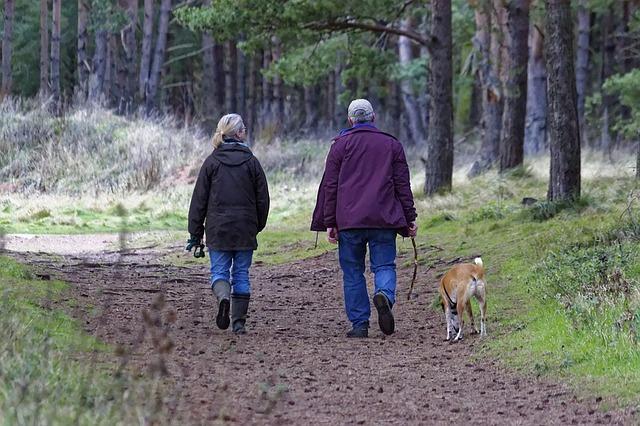 Naučnici otkrili povezanost: Ljudi koji sporo hodaju češće umiru od srčanih bolesti!