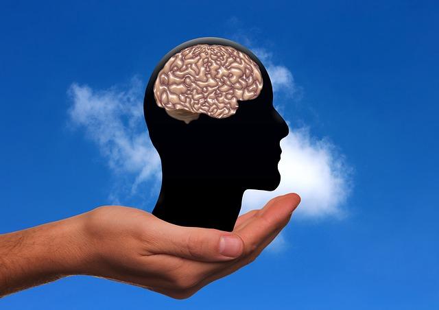 "Neprevaziđeno ""gorivo"" za mozak"