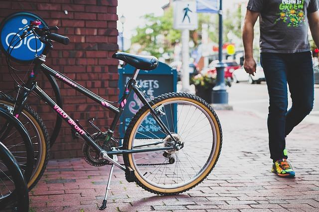 Rađa li se novi vodeći svetski proizvođač bicikala?