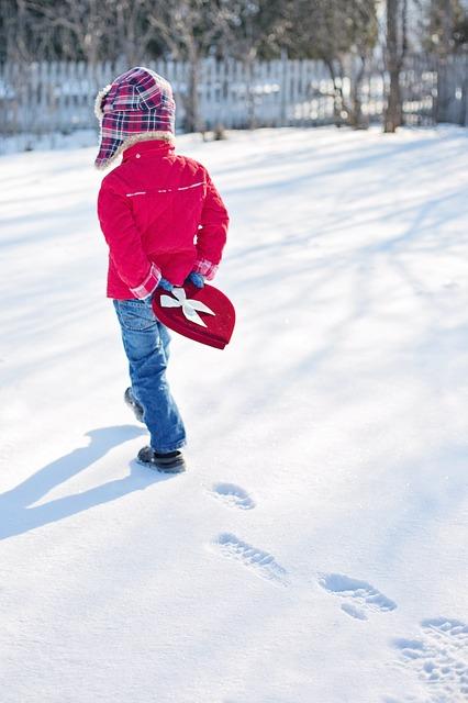 Pravi sneg zatrpao virtuelne igrice