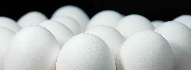 Belgijska policija pokrenula racije zbog skandala s jajima