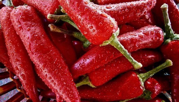 Srpske muke: Pekao paprike u Kanadi, sad mu preti kazna od 50.000 dolara