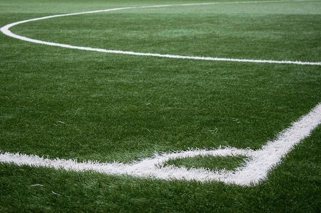 Partizan i Zvezda čekaju rivale: Izbeći Videoton i Milan
