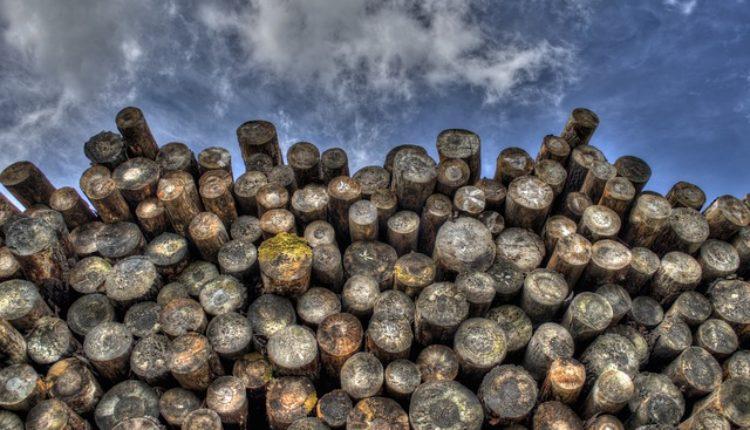 Nesreća na stovarištu: Drva zgnječila radnika