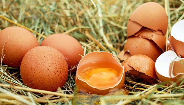 Bićete i siti i vitki: Jedite jaja za doručak – na ovaj način