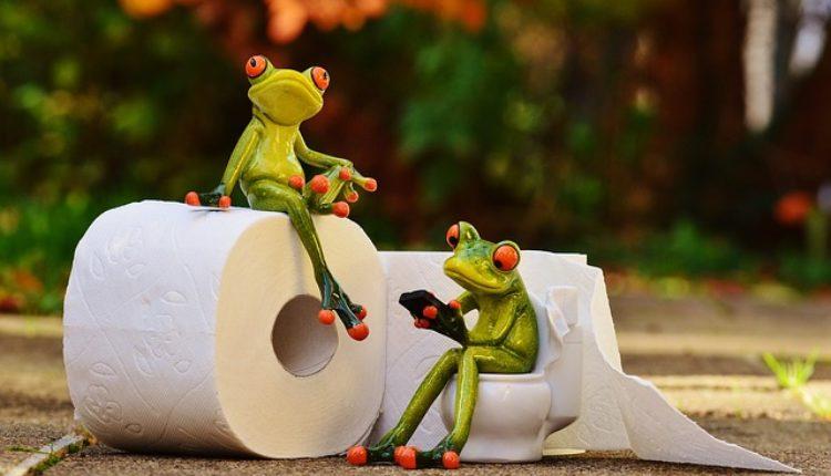 Šta sve možete sa toalet papirom – neobični trikovi, iznenadićete se