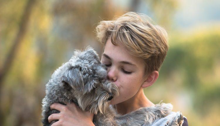 Deca koja odrastaju sa psima imaju brojne zdravstvene koristi