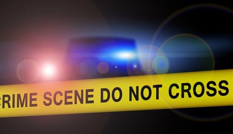 Nezapamćen zločin: Sin isekao majku na komade i zakopao je na više lokacija