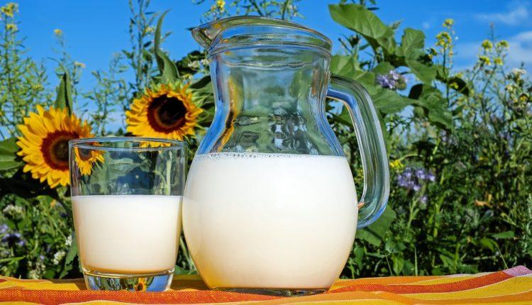Prestala da konzumira mlečne proizvode, evo šta joj se desilo sa organizmom