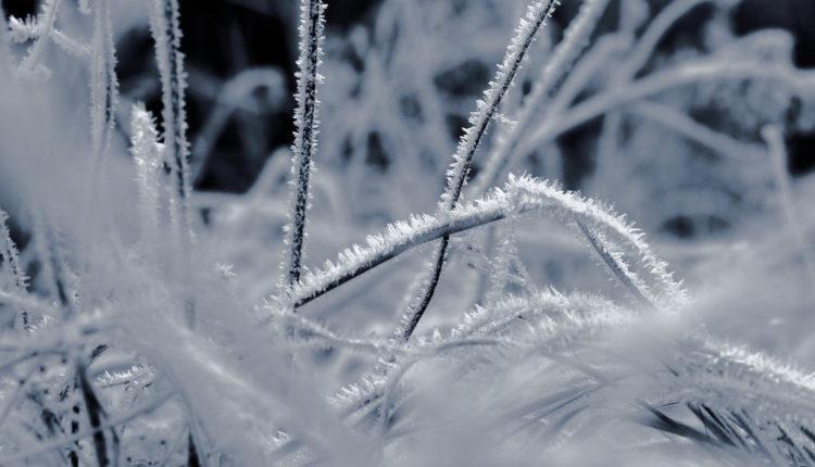 Zima nam zadaje FINALNI udarac