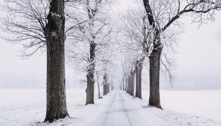 Vanredna situacija u Zaječaru i Boljevcu, zatrpani snegom