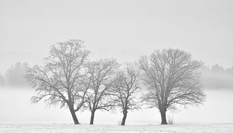 Prva dugoročna prognoza: Evo kakva nas zima čeka