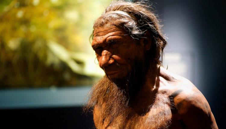 Novo otkriće: Neandertalci su izgledali sasvim drugačije nego što smo mislili