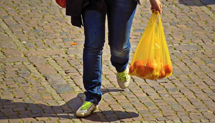 Zbog greške u pravilniku, do 30. juna niko neće biti kažnjen zbog plastičnih kesa