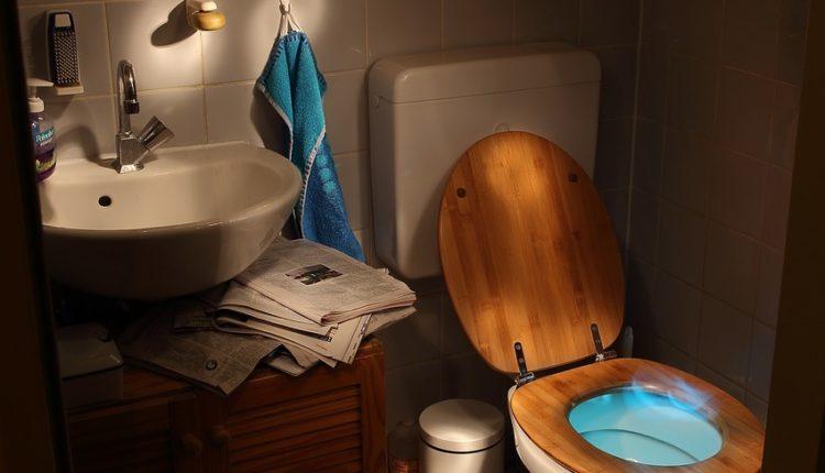 Već 12 godina su u EU, a toalet u kući nema svaki četvrti stanovnik te zemlje