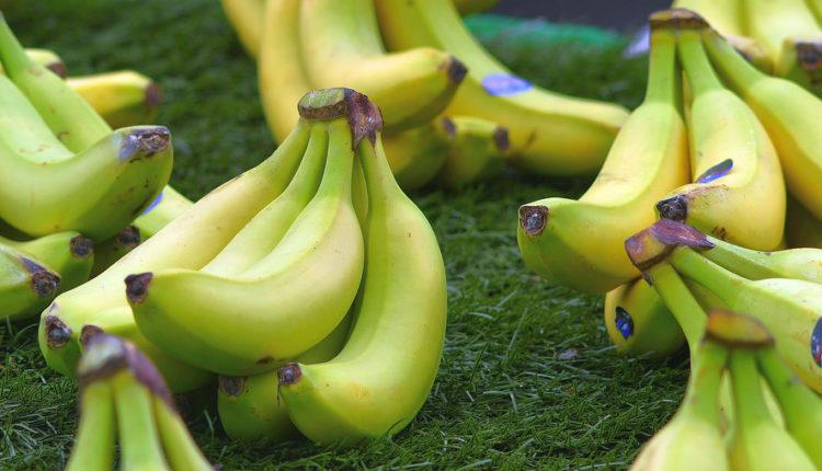 Stavila je u frižider koru od banana i rešila problem koji nas SVE muči