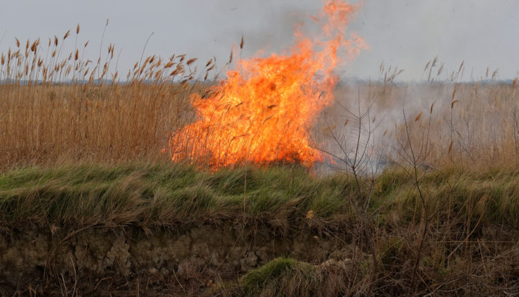 Požar u beogradskom naselju – lokalizovan